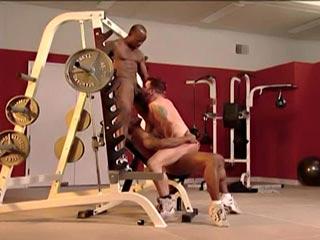 Deux blackos baisent une grosse lope de bodybuilder