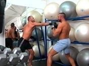 Boxeadores apasionados de las pollas jugosas