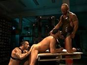 Gros muscles et grosses bites
