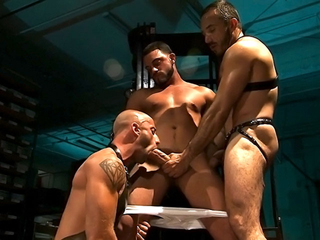 Trio gay de bodybuildeur