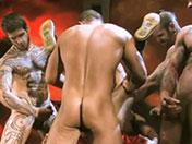 Belle orgie de pornstars gay