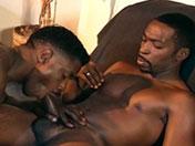 photo de gros p�nis présente dans la vidéo gay