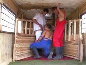 Les garçons d'écuries porno video gay