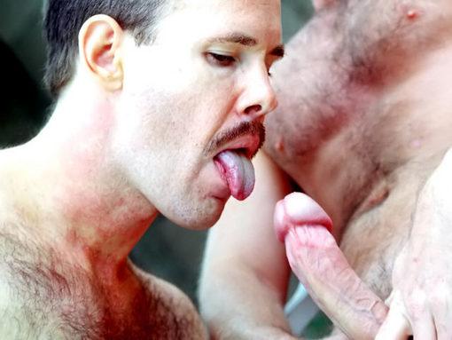 camionneur gay grosse bite minet