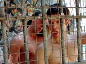Sex  Paint ball anal à Vincennes : Deux militaires baisent dans un bunker
