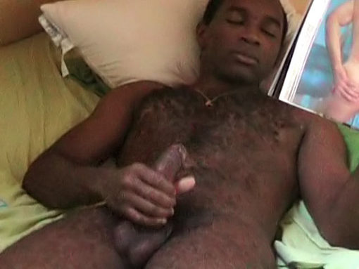 Video bear black gay