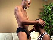 Vidéo porno black baise minet black