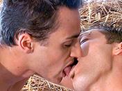 Deux cochons dans le foin video sexe gay